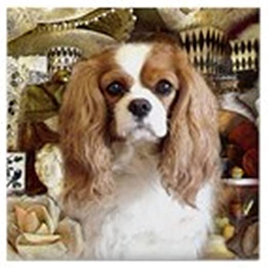 coaster Cavalier King Charles Spaniel cork backed drinks mat og