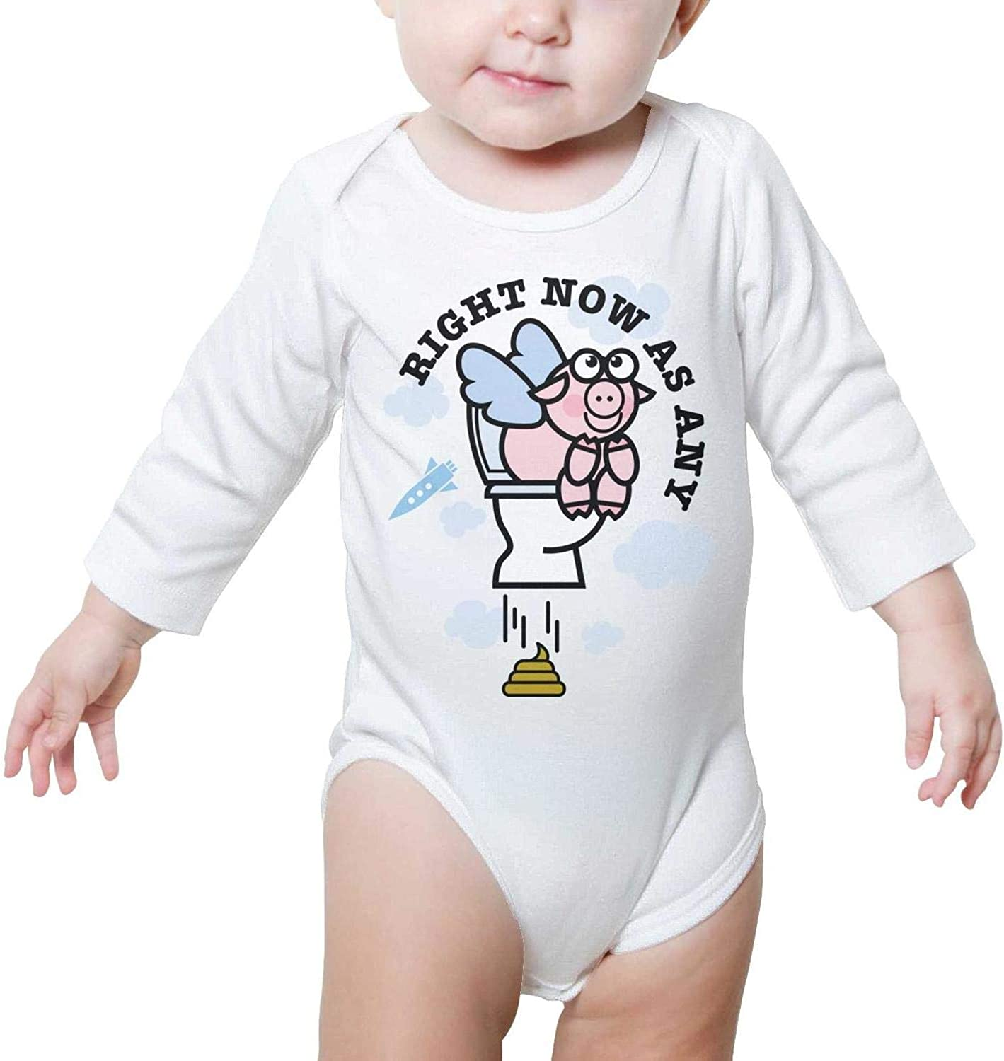 When Pigs Fly Pig Wings Flying High Right Now As Any Baby Onesies Romper Long Sleeve Organic Cotton Gift