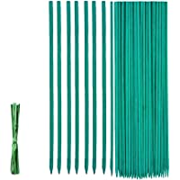 Soporte Plantas 50pcs, Varillas para Plantas 30cm, Varillas de Bambú Verde, Soporte de Planta, Floral Estaca de bambú de…