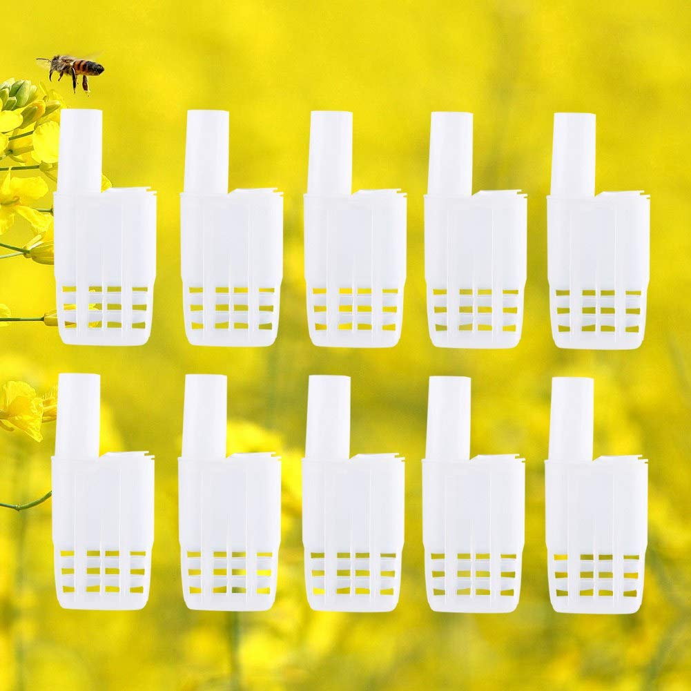 10 Pcs Plastic Queen Bee Cages Isolator Beekeeper Beekeeping Rearing Tools Insectary Box