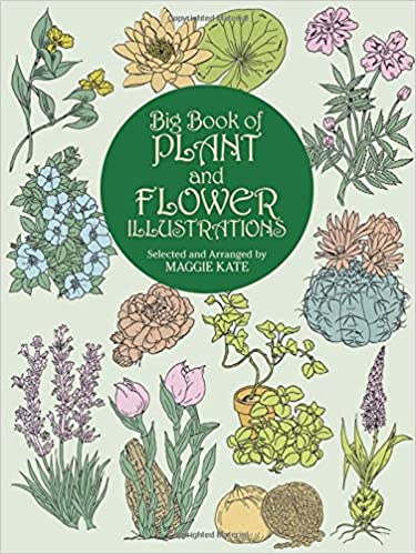 Big Book Of Plant And Flower Illustrations Dover Pictorial Archive Maggie Kate 9780486409467 Amazon Books