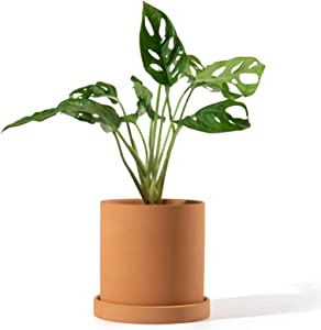 POTEY Terracotta Indoor Planter Pot - 4.5 Inch Pottery Flower Clay Medium Garden Round Bonsai Containers with Watering Drain Holes Saucer-Unglazed 025311