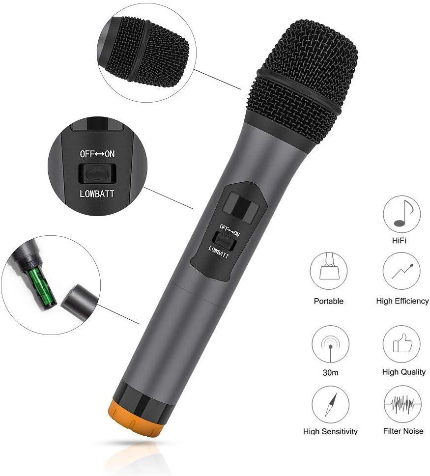 UHF Wireless Mikrofon System Dual 2 Handmikrofon Mikrofone mit Dynamischen LCD Display Tragbare Professionelle Home KTV Set f/ür Karaoke Konferenz LESHP Wireless Mikrofon Party Hochzeit usw