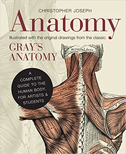 Anatomy A Complete Guide To The Human Body For Artists Students