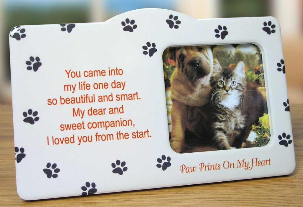 In Memory Of Pet Picture Frames - Best Frames 2018