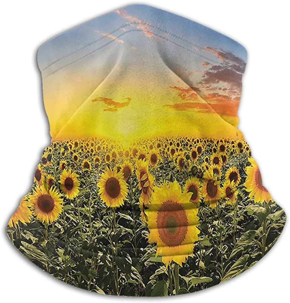 Face Scarf Mask For Men Country Farm Garden Decorations For Dust, Outdoors, Festivals, Sports Sunset over Colorful Sunflower Plants Field at Cloudy Evening Blue Brown Yellow Green