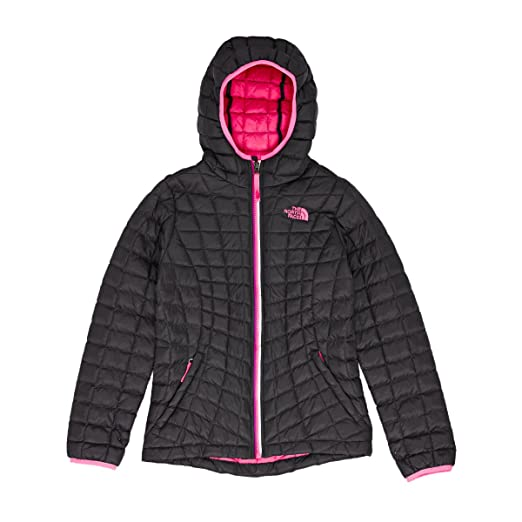 61d1cca61 new zealand the north face hoodie for kids 79290 cd899
