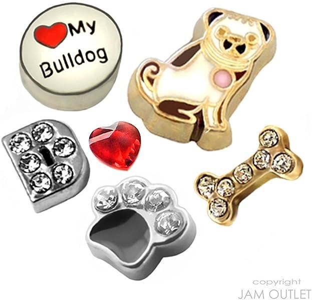 e20c23cd0d53 6 pc Bulldog flotante Charm Set – Bull Dog charms – se adapta a todos los  Generic o Origami de cristal Lockets