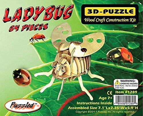 3d Ladybug - 5