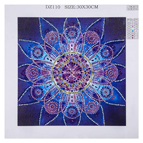 Alimao Special Shaped 2019 New Diamond Painting DIY 5D Partial Drill Cross Stitch Kits Crystal R