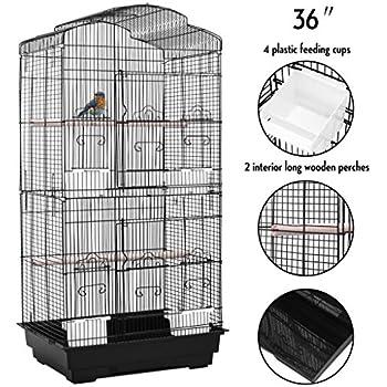 Amazon Com Prevue Pet Products Sp42614 4 Flight Cage