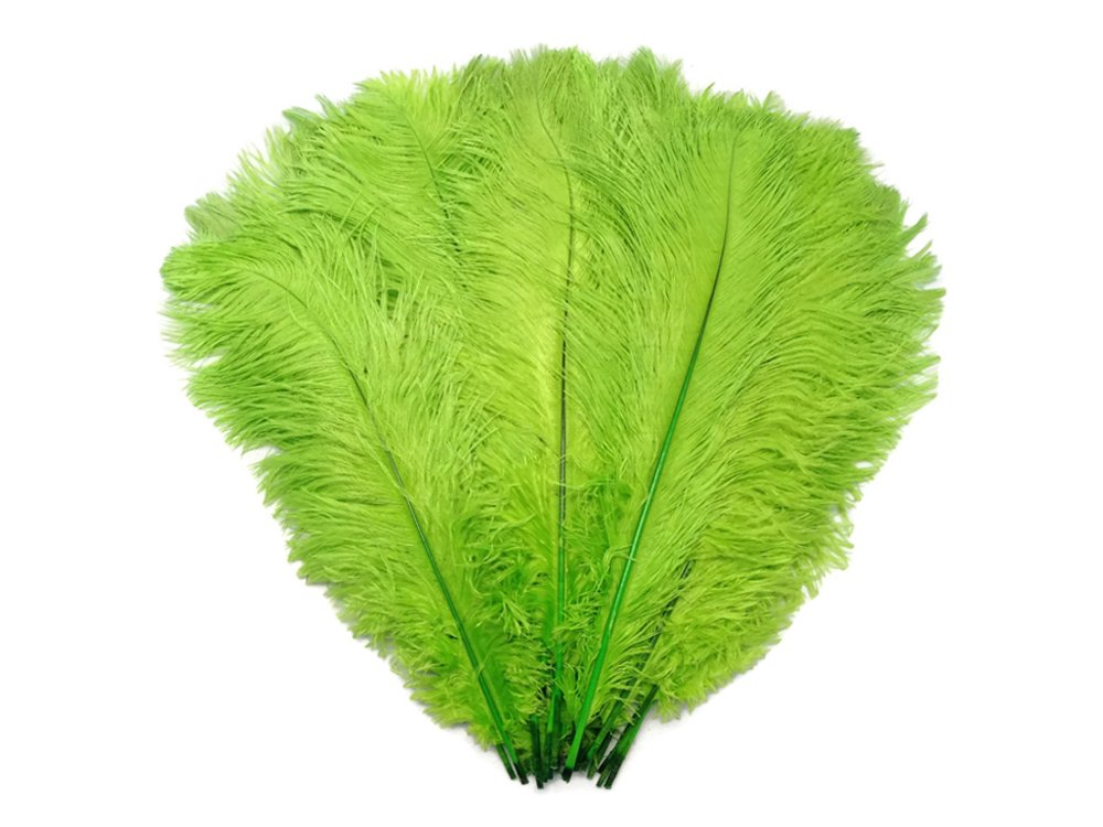 Ostrich Feathers | 1/2 Lb - 9-13'' Lime Green Ostrich Drab Wholesale Feathers (Bulk) Wedding, Party, Costume, Centerpiece.