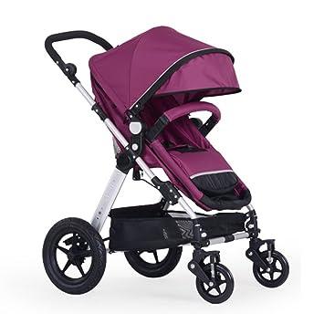 JIANXIN Carro De Bebé Carro De Bebé Carretilla De Bebé De Alto Paisaje Amortiguador Ligero Plegable Puede Sentarse. (Color : Purple): Amazon.es: Hogar