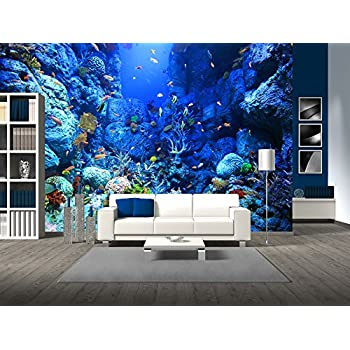 Undersea coral reef photo wall paper for Amazon mural wallpaper