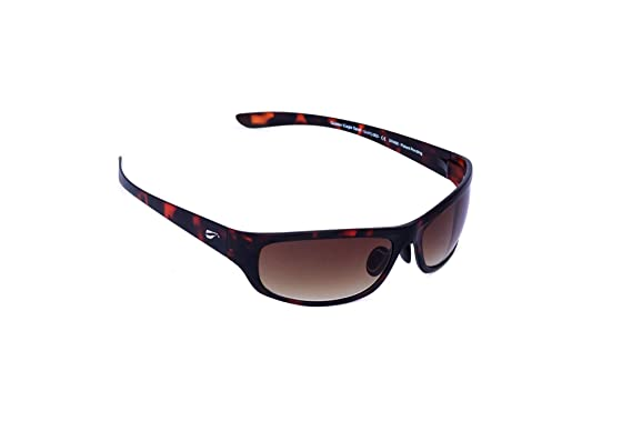 03196eec9a Image Unavailable. Image not available for. Color  Flying Eyes  quot Golden  Eagle quot  Sport Sunglasses ...