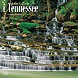 Tennessee, Wild & Scenic 2018 12 x 12 Inch Monthly Square Wall Calendar, USA United States of America Southeast State Nature