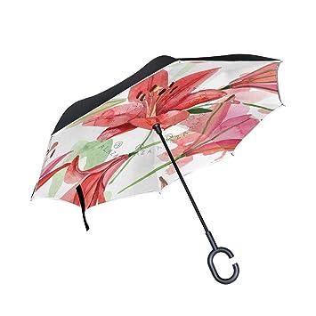 SKYDA Paraguas Plegable de Doble Capa con Forma de C Reverso de ...