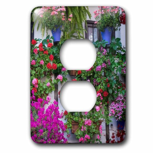 3dRose Danita Delimont - Flowers - Spain, Andalusia. Cordoba. Flowers during the Festival of the Patio. - Light Switch Covers - 2 plug outlet cover (lsp_277892_6) by 3dRose