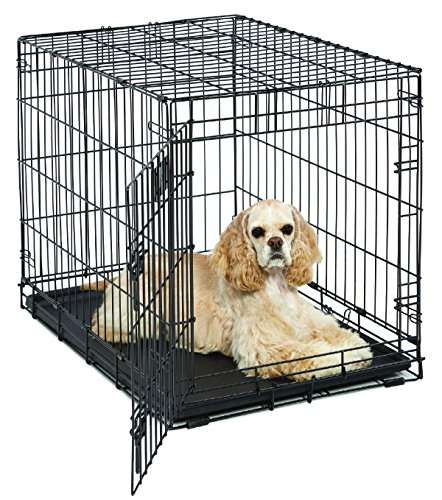 "Medium Dog Crate | MidWest Life Stages 30"" Folding Metal Dog Crate 