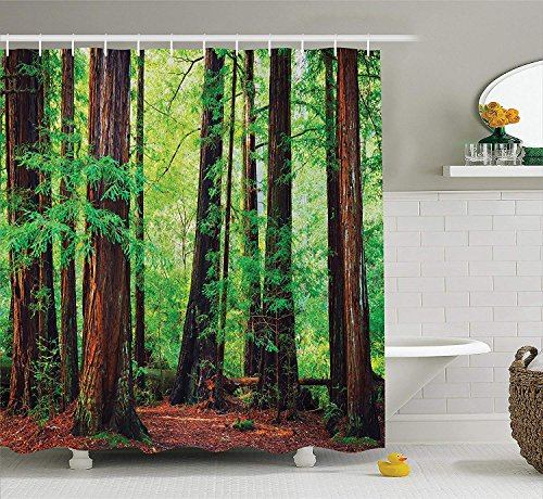 Tree Shower Curtain Woodland Decor, Redwood Trees Northwest Rain Forest Tropical Scenic Wild Nature Lush Branch Image, Polyester Fabric Bathroom Shower Curtain Set with Hooks, Green Brown
