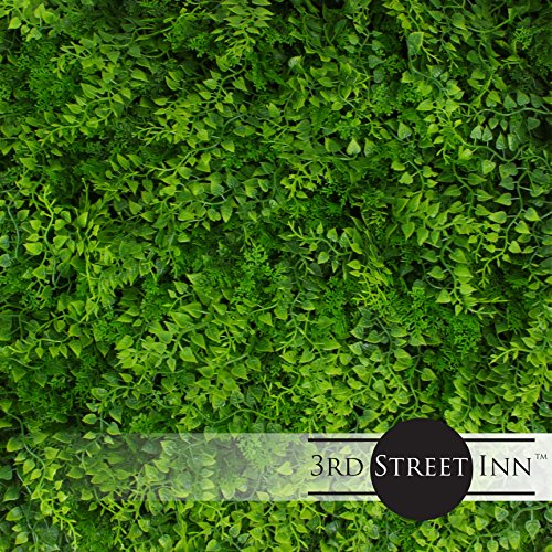 Artificial Hedge - Outdoor Artificial Plant - Great Fern and Ivy Substitute - Sound Diffuser Privacy Fence Hedge - Topiary Greenery Panels (12, Juniper) by 3rd Street Inn