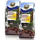 Java Planet - Sumatra Indonesian USDA Organic Coffee Beans, Dark Roasted, Fair Trade, Arabica Gourmet Specialty Grade A, packaged in two 1 LB bags