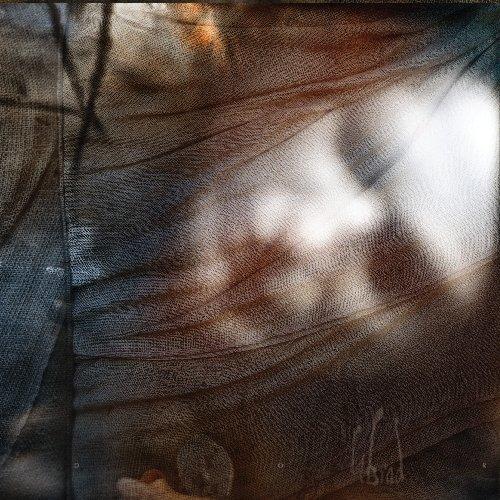 Din Brad: Dor (Digipak) (Audio CD)