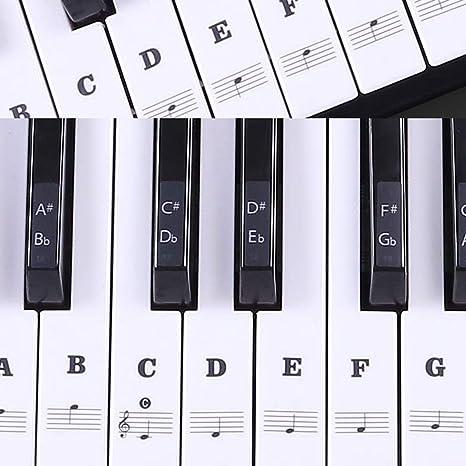 Lanyifang Pegatinas de Piano 49/54/61/88 Teclados Clave Transparente ...