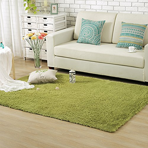 Junovo Ultra Soft Contemporary Fluffy Thick Indoor Area Rug for Home Decor Living Room Bedroom Kitchen Dormitory,4' x 5.3' ,Green