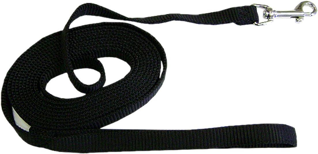 Hamilton Nylon Dog Training Lead 5//8 by 10-Inch Black
