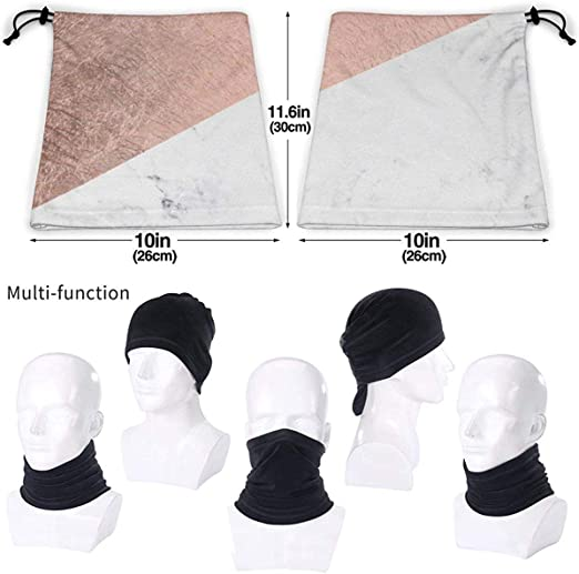 Dinosaur Rose Microfiber Neck Warmer Balaclavas Soft Fleece Headwear Face Scarf Mask For Winter