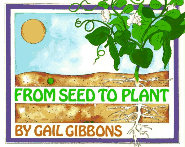 Image result for from seed to plant