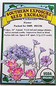 Celosia Cockscomb Mix Certified Organic Seeds 225 Seeds