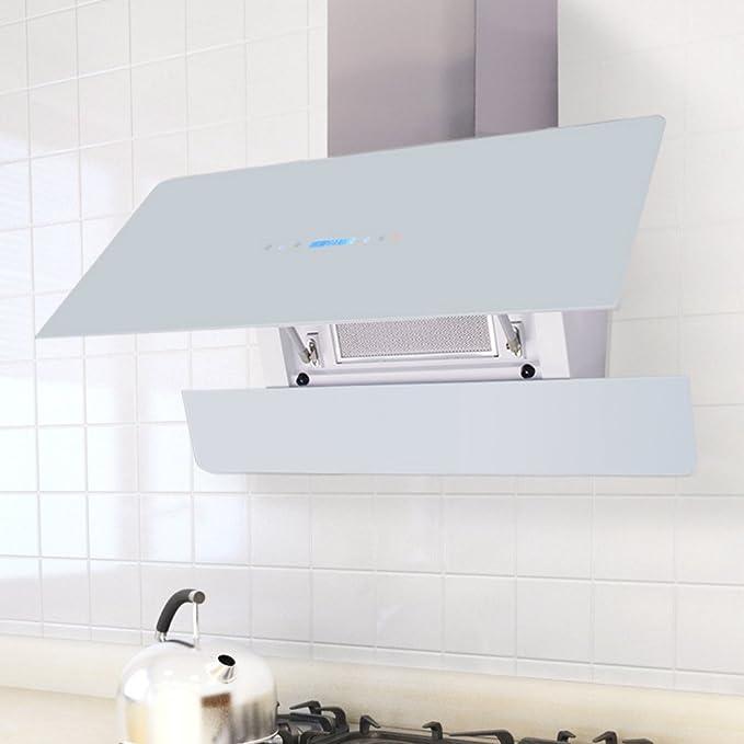 vidaXL Campana extractora con pantalla táctil Blanca 900 mm: Amazon.es: Hogar