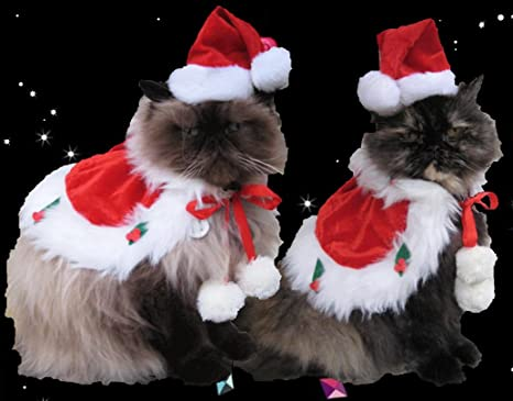 amazon com santa hat and cape for cats and dogs with 7 15 collar