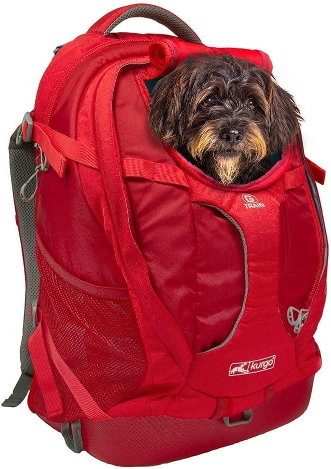 Kurgo K01909 Kleiner Rucksack Für Kleine Hunde Und Katzen G Train Haustier Rucksack Flugzeug Genehmigt Chili Rot Haustier