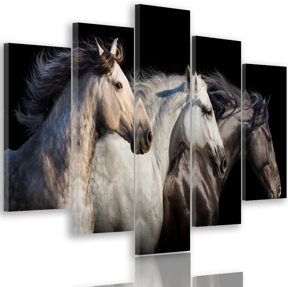 Feeby Frames, Cuadro Grande, Cuadro en Lienzo - 5 Partes - Cuadro impresión, Cuadro decoración, Canvas XXL, Tipo A, 300x140 cm, Caballos, Animales, Naturaleza, Negro, Blanco