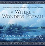 Where Wonders Prevail: True Accounts That Bear Witness to the Existence of Heaven