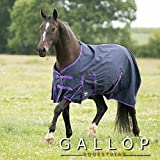 Gallop Lite-Weight Trojan Turnout Rug - Navy/Purpl