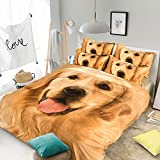 RuiHome 3pcs Duvet Cover Set 205 Thread Count Soft Polyester Kids Dorm Bedding Collection - Twin Size, Golden Retriever Printed Pattern