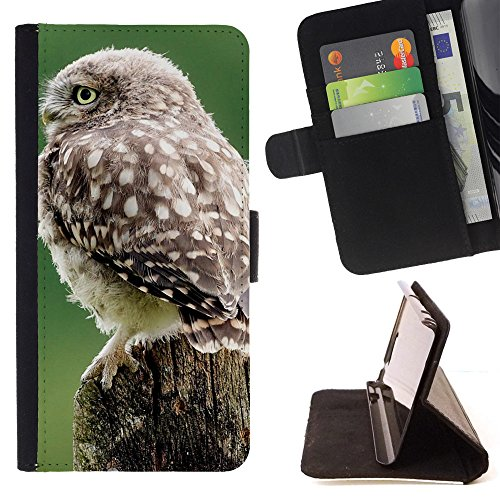 God Garden - FOR Apple Iphone 6 PLUS 5.5 - Owl Bird Photo - Glitter Teal Purple Sparkling Watercolor Personalized Design Custom Style PU Leather Case Wallet Fli
