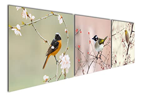 Gardenia Art – Animal World Series 17 Colorful Birds on Branch Modern Canvas Wall Art Paintings Animals Artwork for Bedroom Living Room Decoration,12×16 inch per piece, Stretched and Framed