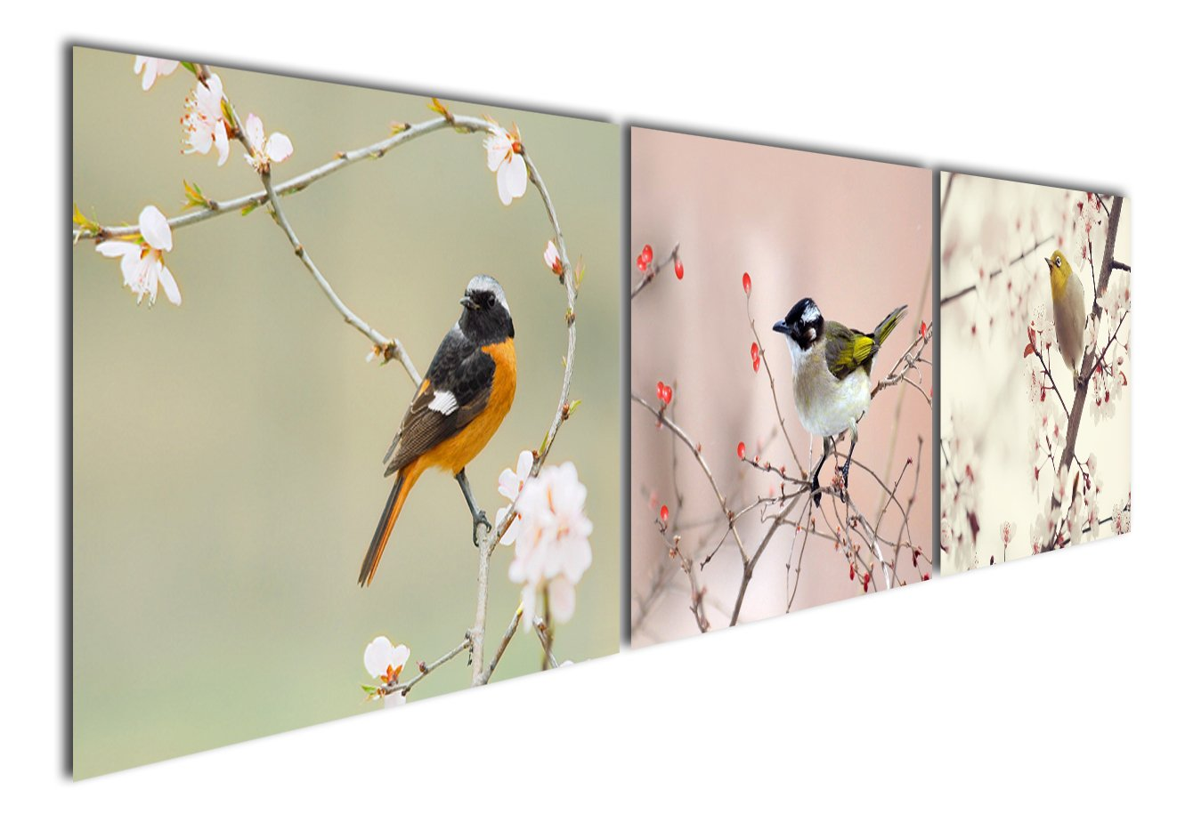 Gardenia Art - Animal World Series 17 Colorful Birds on Branch Modern Canvas Wall Art Paintings Animals Artwork for Bedroom Living Room Decoration,12x16 inch per piece, Stretched and Framed