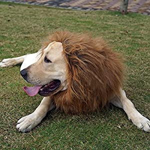 ANGTUO Lion Mane for Dogs Unique Lion Soft Hair For Pets Christmas Halloween Party Cosplay Costume Funny Puppy Collar Suitable for Outdoor Warmth(L)