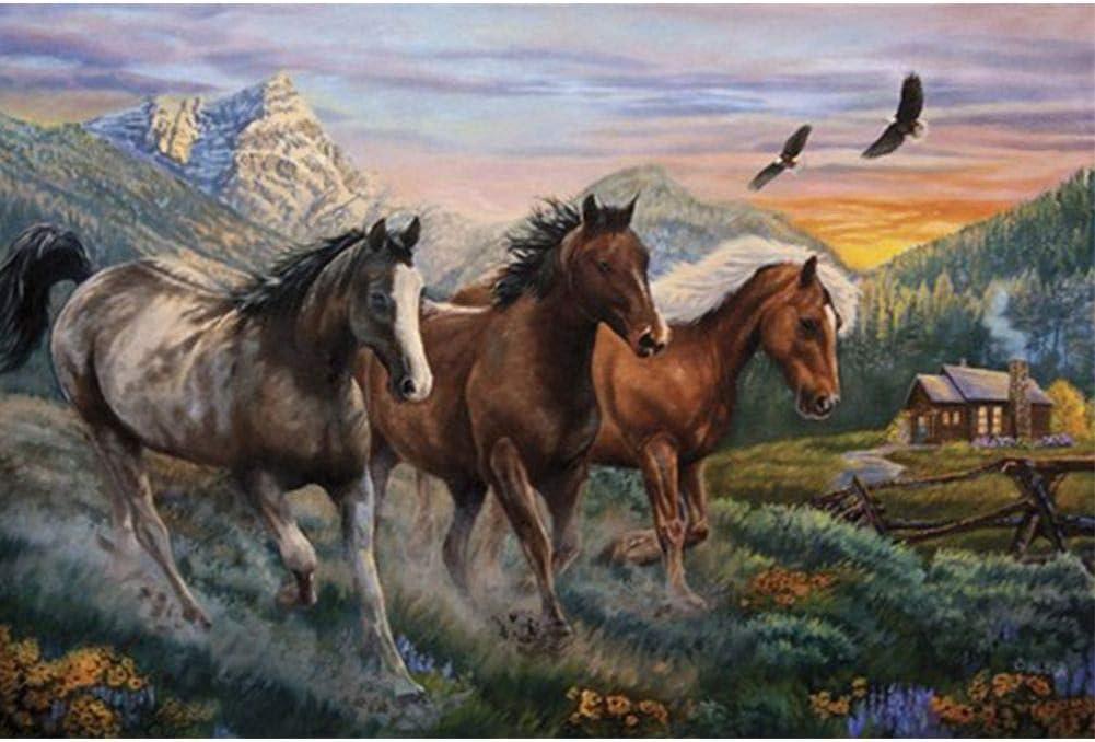 Boyissy - Kit de pintura de diamante 5D para pintar con número de pintura de bordado de cuadros, manualidades, tres caballos de 15,7 x 11,8 pulgadas