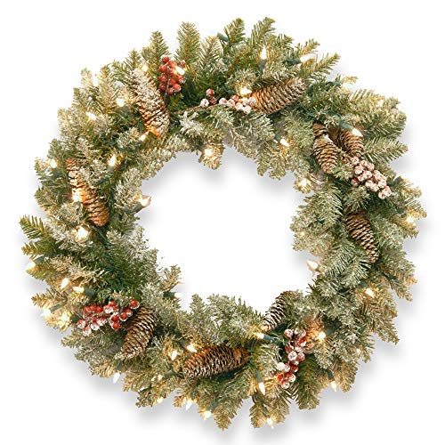 (Pre-Lit Dunhill Fir Artificial Christmas Wreath with Red Berries - 30-Inch, Clear Lights )