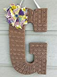 Best Designs For Outdoor Uses - Decorative Initial-Front Door Décor- SAFE for Outdoor USE! Review