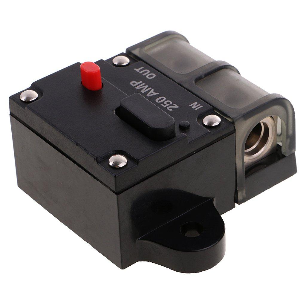 Gazechimp Automatik Sicherungshalter Stereo Audio Leistungsschalter Reset Sicherung 12V-24V DC 150A