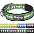 Blueberry Pet Soft & Comfortable Neoprene Padded Dog Collar with Jacquard Pattern, Matching Leash & Harness Available Separately by Blueberry Pet