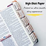 Mr. Pen- Bible Tabs for Catholic or Other